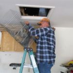 Nuisance wildlife: Raccoon removal from an Independence KS attic.